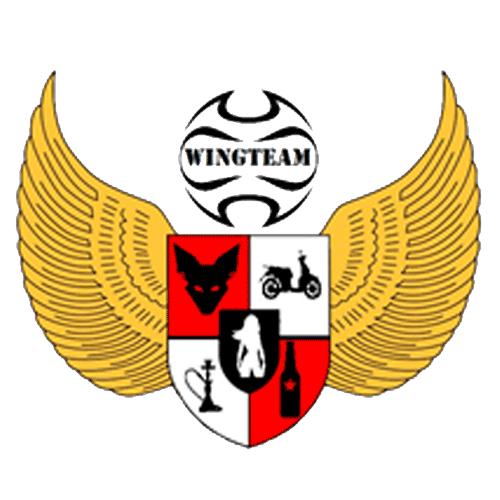 Wingteam